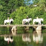 Leisure and nature activities in Haute-Loire